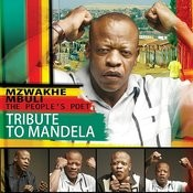 Tribute To Mandela Songs