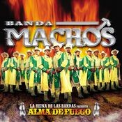 Alma de fuego Songs