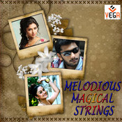 Melodious Magical Strings Songs