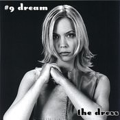 #9 Dream Songs