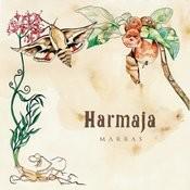 Marras Songs
