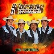 Viva Tlapehuala Songs