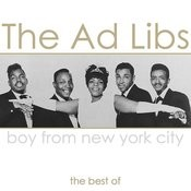 Boy From New York City - The Best Of Songs