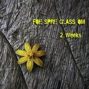 Two Weeks Songs