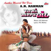Tu Hi Mera Dil Songs