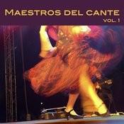 Maestros Del Cante, Vol. 1 Songs