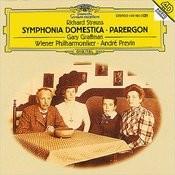 Sinfonia Domestica, Op.53: Adagio. Langsam Song
