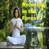 Relaxing in the Forest Song