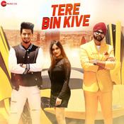 Tere Bin Kive Song