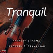 Tranquil Narayan Sharma Full Mp3 Song