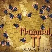 Black Flies Songs
