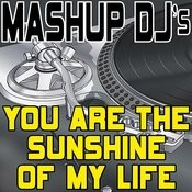 You Are The Sunshine Of My Life (Remix Tools For Mash-Ups) Songs