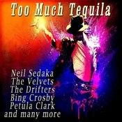 Too Much Tequila Songs