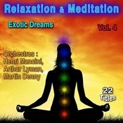 Relaxation & Meditation, Vol. 4: Exotic Dreams Songs