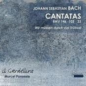 Bach: Cantatas 146, 33 & 103 Songs
