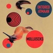 Molluscks Songs