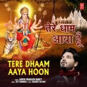Tere Dhaam Aaya Hoon Song