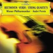 Beethoven Verdi String Quartets Songs