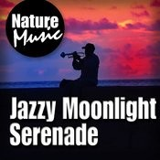 Jazzy Moonlight Serenade (Nature Sound with Music) Songs