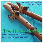 Two Hawks' Healing: Native Flute For Yoga, Massage & Relaxation Songs