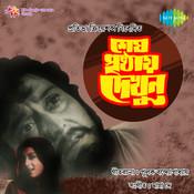 Shesh Pristhay Dekhun Songs