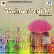 Moina Na Jayo Song