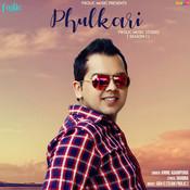 Phulkari Song