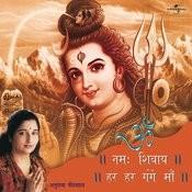 Om Namah Shivaye - Har Har Gange Maa Songs