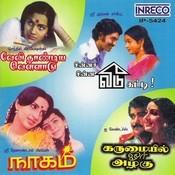 Velithandiya Vellaadu - Chinna Chinna Veedu Katti - Naagam - Karumayil Orr Azhahu Songs