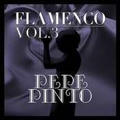 Flamenco: Pepe Pinto Vol.3 Songs