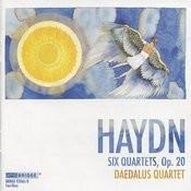 Daedalus Quartet: Haydn Recording Songs