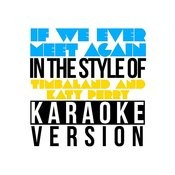 If We Ever Meet Again (In The Style Of Timbaland & Katy Perry) [Karaoke Version] - Single Songs