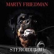 Steroidhead Songs