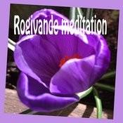 Rogivande Meditation Songs