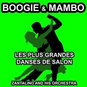 Les Plus Grandes Danses De Salon: Boogie & Mambo Songs