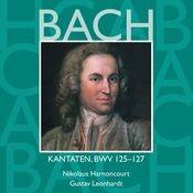 Bach, JS : Sacred Cantatas BWV Nos 125 - 127 Songs