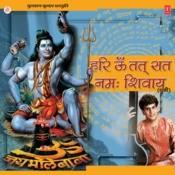Hari Om Tatsat Namah Shivay Song