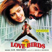 Love Birds Songs