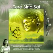 Tere Bina Sai Songs