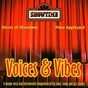 Voices And Vibes Songs