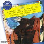 Strauss, R.: Ein Heldenleben / Wagner: Siegfried-Idyll Songs
