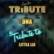 Dna (In The Style Of Little Mix) [Karaoke Version] Song