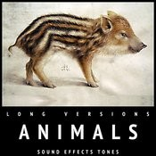 Animals Sound Effects Tones Long Versions Songs