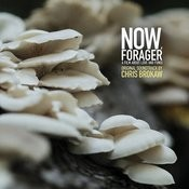 Now, Forager (Original Motion Picture Soundtrack) Songs