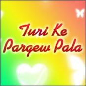 Turi Ke Pargew Pala Songs