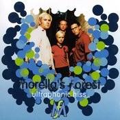 Ultraphonic Hiss Songs