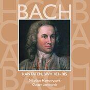 Cantata No.185 Barmherziges Herze der ewigen Liebe BWV185 : V Aria -