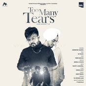 Too Many Tears Song