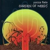 Garden Of Weeds Songs