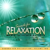 Sounds For Relaxation Vol. 2 Songs